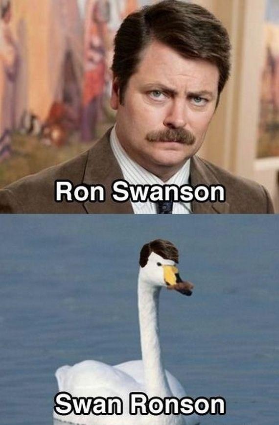 Ron Swanson, Swan Ronson