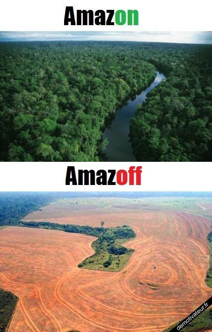 Amazon, Amaoff