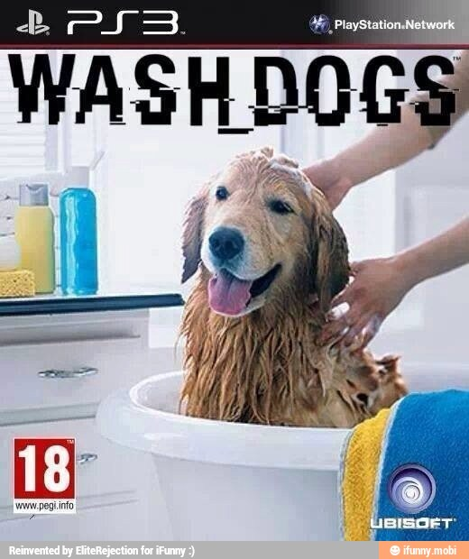 Wash Dogs