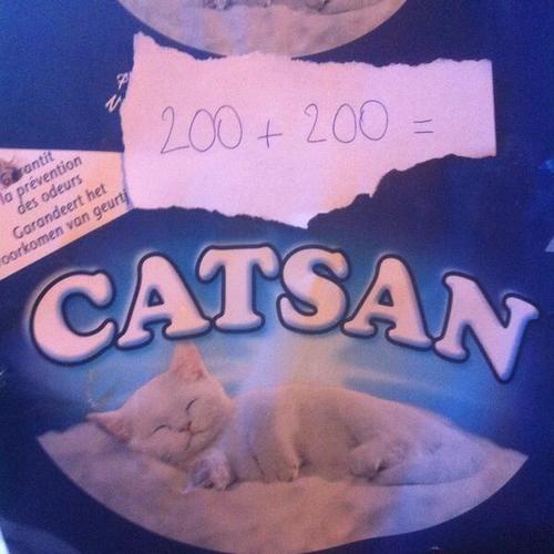 200+200 = catsan